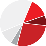 pie chart graphic